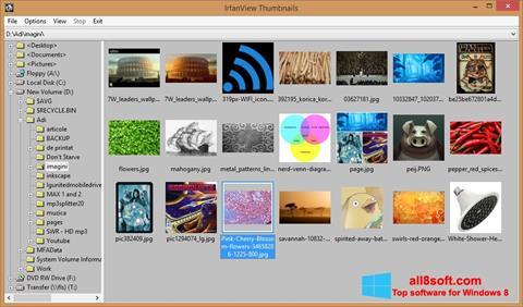 Captura de pantalla IrfanView para Windows 8